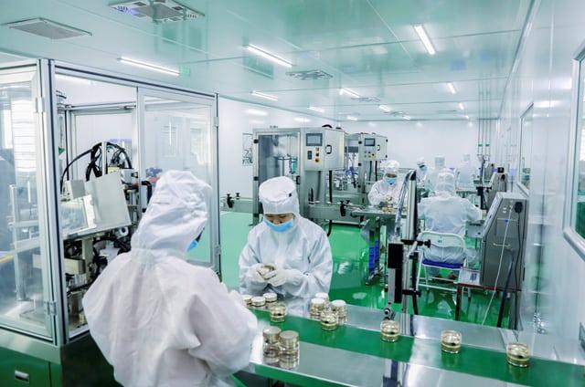 Sinh viên ngành Dược trải nghiệm thực tập tại nhà máy, công ty sản xuất Dược phẩm