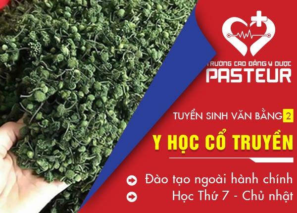 Tuyển sinh đào tạo Văn bằng 2 Y học cổ truyền TPHCM tại quận Tân Phú